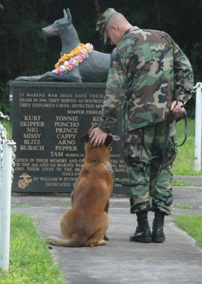 Soldier and his dog